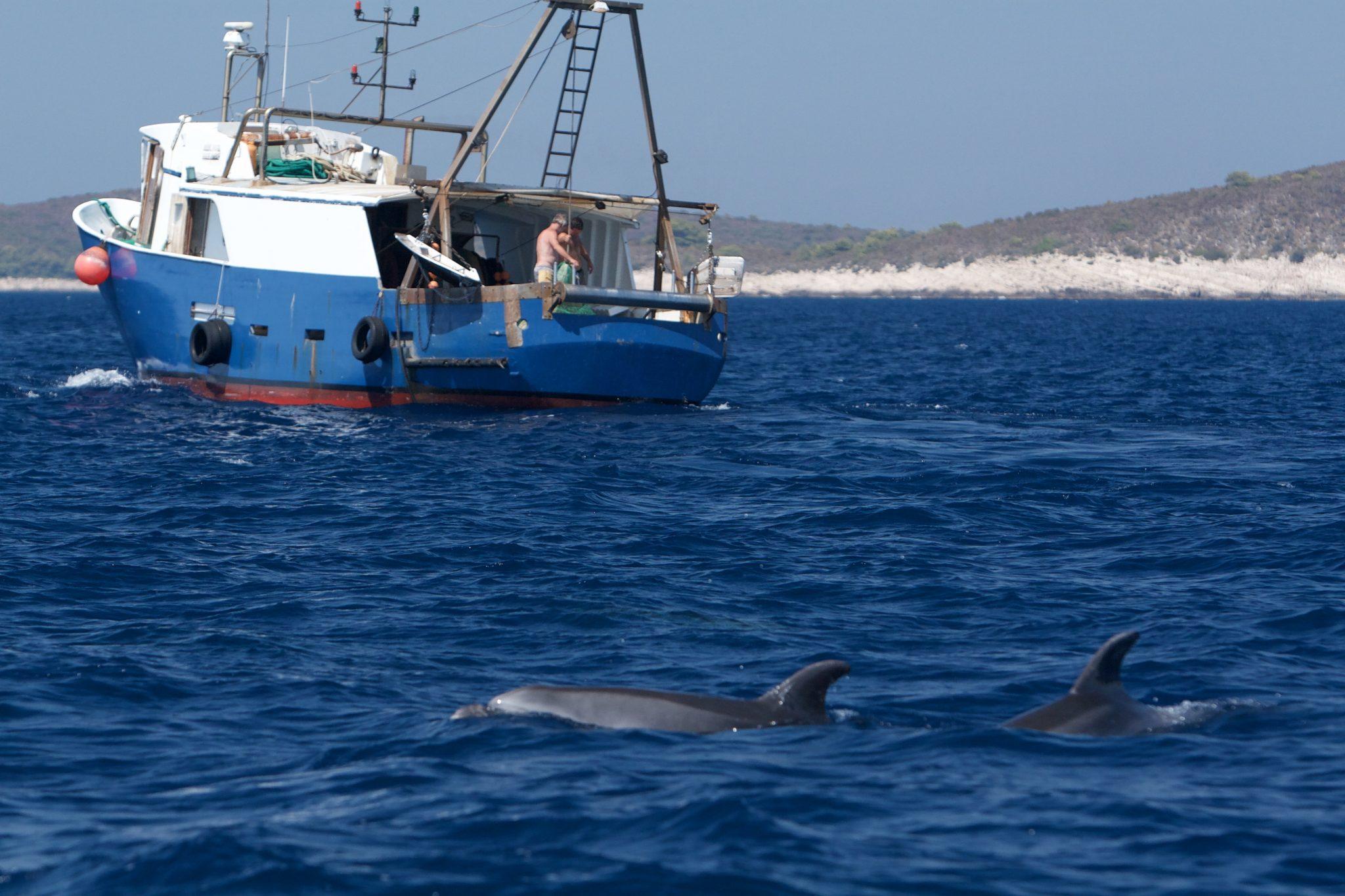 softver za društvene mreže za druženje s delfinima se khloe kardashian datira iz francuske Montane